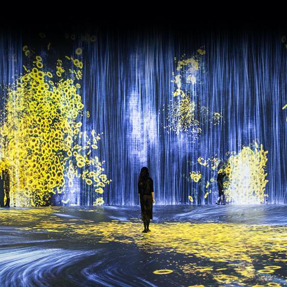 チームラボ、ソウルの東大門デザインプラザ(DDP)にて個展を開催2020.09.18-2021.03.28